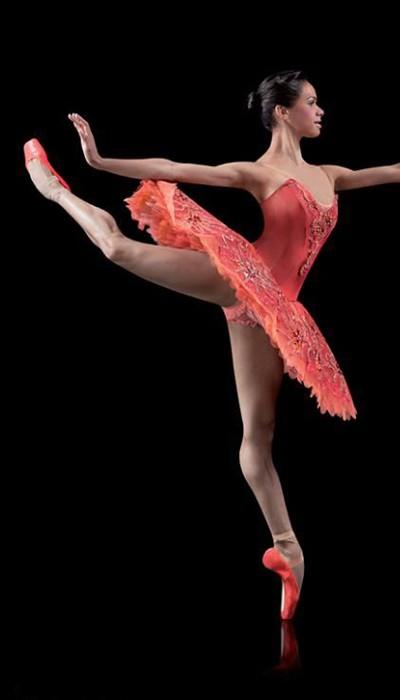 misty copeland ballet tutu 14000 notefolio